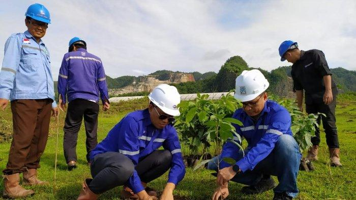 Hari Lingkungan Hidup, Bosowa Semen Tanam Ribuan Pohon di Maros